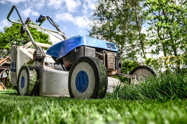 sekání trávníku